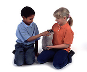 Young Boy and Girl, aged 10 years old, holding and stroking rabbit, studio, white background, cut out, pet