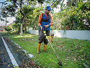03 JUNE 2015 - KULAI, JOHORE, MALAYSIA: Rohingya refugees work as gardeners and street cleaners in a middle class neighborhood in Kulai, Malaysia. They are paid about 40 Malaysian Ringgit per day (roughly $11 US) to cut the grass in public spaces and keep sewer lines open. Most of them came to Malaysia as refugees, this menial work is the only work they can find. The UN says the Rohingya, a Muslim minority in western Myanmar, are the most persecuted ethnic minority in the world. The government of Myanmar insists the Rohingya are illegal immigrants from Bangladesh and has refused to grant them citizenship. Most of the Rohingya in Myanmar have been confined to Internal Displaced Persons camp in Rakhine state, bordering Bangladesh. Thousands of Rohingya have fled Myanmar and settled in Malaysia. Most fled on small fishing trawlers. There are about 1,500 Rohingya in the town of Kulai, in the Malaysian state of Johore. Only about 500 of them have been granted official refugee status by the UN High Commissioner for Refugees. The rest live under the radar, relying on gifts from their community and taking menial jobs to make ends meet. They face harassment from Malaysian police who, the Rohingya say, extort bribes from them.    PHOTO BY JACK KURTZ