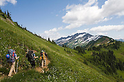 Climbers hike the Pacific Crest Trail towards White Pass on their way to climb Glacier Peak, Glacier Peak Wilderness, Washington.