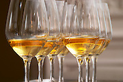 two rows of wine tasting glasses with luscious golden sweet white wine from Uroulat Jurancon Charles Hours, France, served at the gastronomic restaurant Maceo in Paris