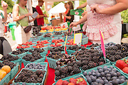 Valley Berry Farm