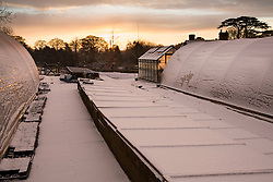 Coldframes, polytunnels and greenhouse covered in snow in the nursery at Glebe Cottage
