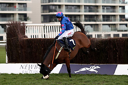 Theatre Guide ridden by Paddy Brennan pecks on landing in the William Hill Supporting Greatwood Veterans' Handicap Chase at Newbury Racecourse.