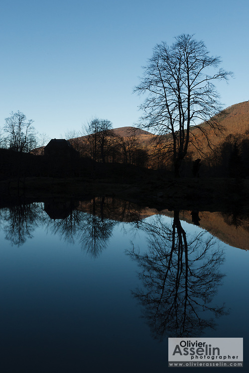 Etang de Bethmale in the Bethmale valley, Pays Couserans, Ariege, Midi-Pyrenees, France.