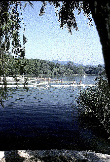 Barcelona Olympics 1992 - Lake Banyoles, SPAIN,  GV's,  Crews boating, start pontoon, round the lake,  Photo: Peter Spurrier/Intersport Images.  Mob +44 7973 819 551/email images@intersport-images.com