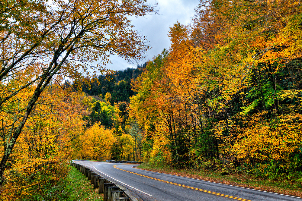 Beautiful fall colors from the Morton Overlook at Great Smoky Mountains National Park in Gatlinburg, TN on Monday, October 9, 2017. Copyright 2017 Jason Barnette