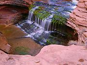 Slickrock waterfall and pool, Cow Canyon, Escalante River Basin, Glen Canyon National Recreation Area, Utah.