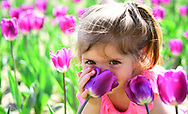 Danger in a vase. face skincare. allergy to flowers. Small child. Natural beauty. Childrens day. Little girl in sunny spring. Summer girl fashion. Happy childhood. Springtime tulips. weather forecast.