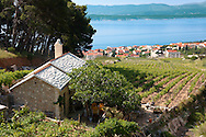 view of Bol  and its vineyards looking towards Hvar island , Bra? island, Croatia .<br /> <br /> Visit our CROATIA HISTORIC SITES PHOTO COLLECTIONS for more photos to download or buy as wall art prints https://funkystock.photoshelter.com/gallery-collection/Pictures-Images-of-Croatia-Photos-of-Croatian-Historic-Landmark-Sites/C0000cY_V8uDo_ls