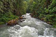 Spring runoff at Tamihi Creek in the Chilliwack River Valley.  Photographed from the bridge at the Tamihi Creek Recreation Site in the Chilliwack River Valley, Chilliwack, British Columbia, Canada