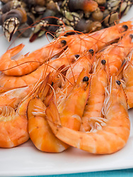 Close-up of prawns and goose barnacles, Getxo, Algorta, Basque Country, Biscay, Spain, Europe
