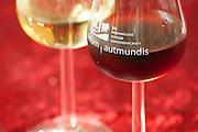 Wein der Winzergenossenschaft Groß-Umstadt, Groß-Umstadt, Odenwald, Naturpark Bergstraße-Odenwald, Hessen, Deutschland   wine of Winzergenossenschaft Groß-Umstadt, Gross-Umstadt, Odenwald, Hesse, Germany