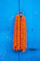 Inde, Bengale-Occidental, Kolkata, Calcutta, porte, cadenas et fleur // India, West Bengal, Kolkata, Calcutta, door, padlock and flower