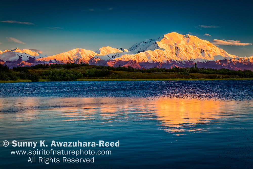 Sunset glow on Mt. Denali (McKinley), reflections rippled on Reflection Pond, Denali National Park & Preserve, Interior Alaska, Autumn.