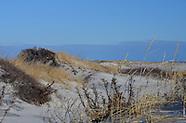 Island Beach State Park -January 2014