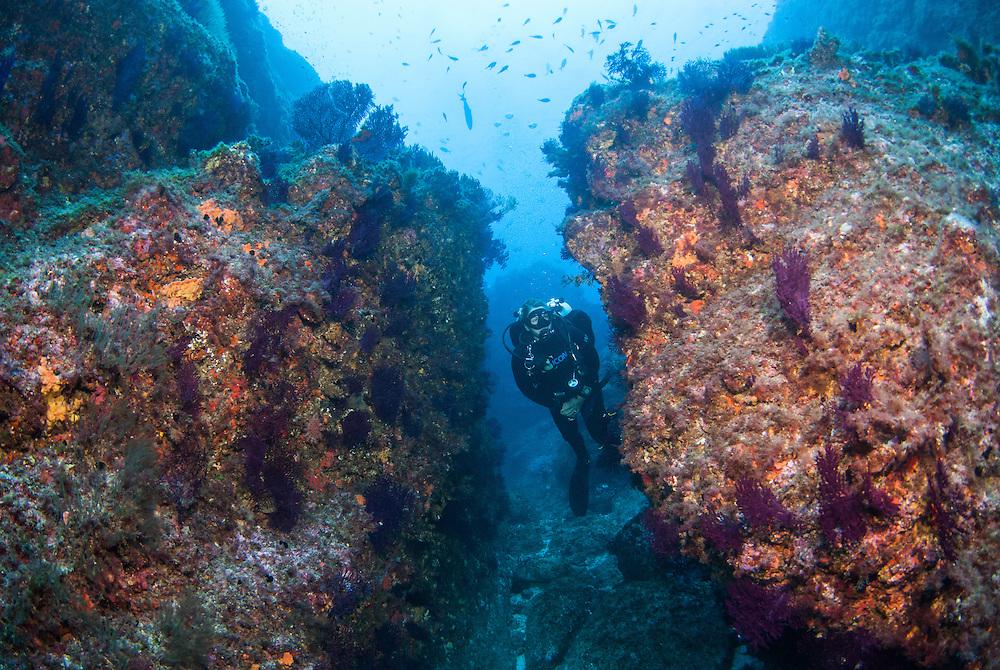 Kermadecs Marine Reserve