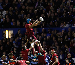 Tadhg Beirne of Munster claims the lineout<br /> <br /> Photographer Simon King/Replay Images<br /> <br /> Guinness PRO14 Round 4 - Cardiff Blues v Munster - Friday 21st September 2018 - Cardiff Arms Park - Cardiff<br /> <br /> World Copyright © Replay Images . All rights reserved. info@replayimages.co.uk - http://replayimages.co.uk