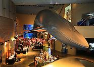 Long Beach Aquarium Event