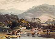 A Kaffer [Kaffir] Village hand colored plate from the collection of  ' African scenery and animals ' by Daniell, Samuel, 1775-1811 and Daniell, William, 1769-1837 published 1804