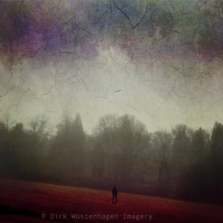 Surreal landscape with a man standing on a red meadow - manipulated photograph