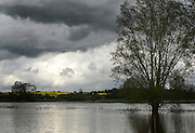 © Licensed to London News Pictures. 29/04/2012. Stapleford, UK . Flooding in Tawney, Stapleford, Essex. Torrential rain has lead to flooding in parts of the country today 29 April 2012. Photo credit : Stephen Simpson/LNP