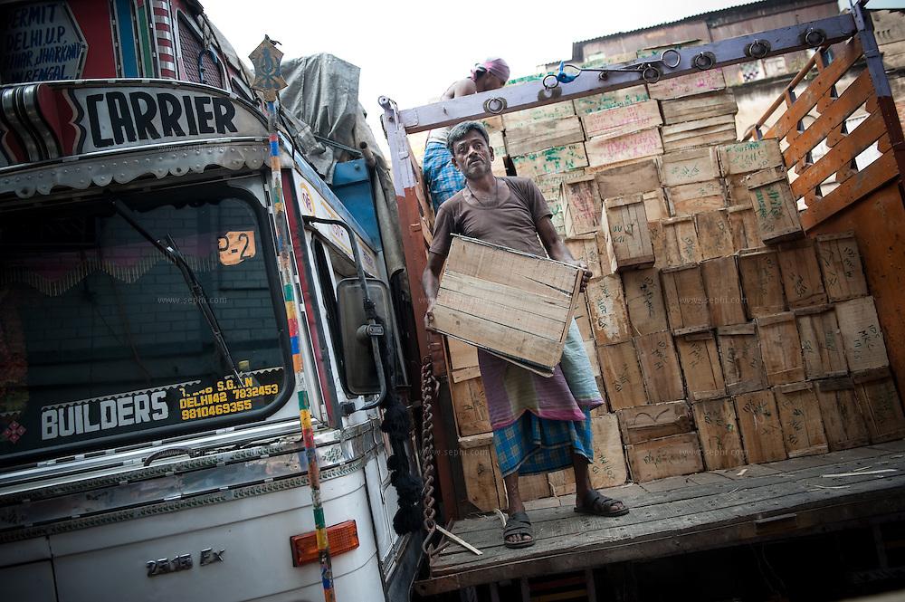 unloading a truck at Kolkata's fruit market