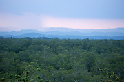 Panoramic view of forests and tree canopies at the Samboja Lestari conservation area in East Kalimantan, Indonesia, on March 12, 2016. <br /> (Photo: Rodrigo Ordonez)