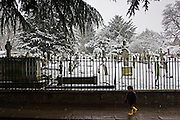 Young boy walks past snow covered graveyard, London, United Kingdom