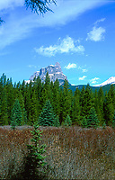 Castle mountain from Bow Valley Parkway