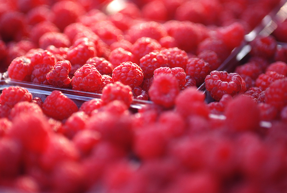 Close up selective focus photograph of a few containers of Red Raspberries