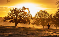 © Licensed to London News Pictures. 20/11/2020. London, UK. A runner in Richmond Park, South West London enjoys a frosty sunrise over the hills and trees as temperatures dropped bellow -1c last night for the South East of England. However, the weekend will become milder with some rain and light winds. Photo credit: Alex Lentati/LNP