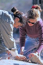 Alex Adinamis & Erin Casey Excavating Site