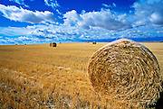 Hay bale in field near Great Falls Montana