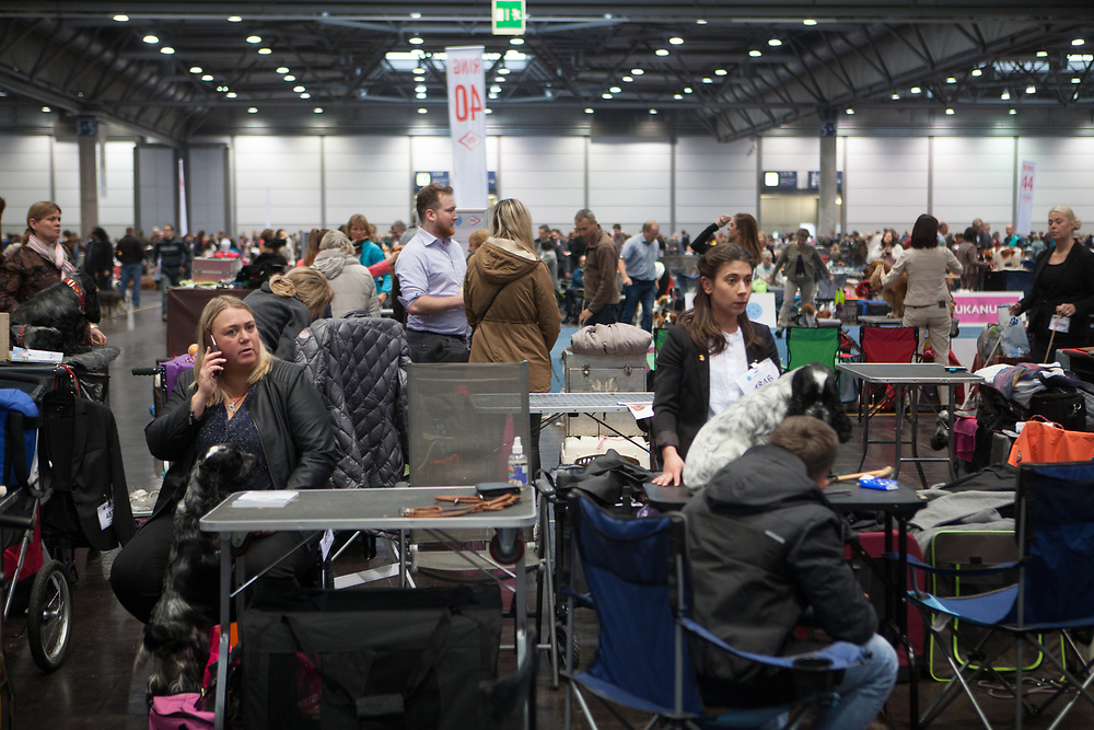 The World Dog Show at the Leipzig Trade Fair in Germany. Over 31,000 dogs from 73 nations will come together from 8-12 November 2017 in Leipzig for the biggest dog show in the world.
