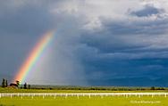 Old weathered barn with rainbow near Whitefish, Montana, USA