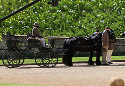 Fell ponies, Balmoral Nevis and Notlaw Storm pullling the Duke of Edinburgh's driving carriage at the funeral of the Duke of Edinburgh at Windsor Castle, Berkshire. Picture date: Saturday April 17, 2021.