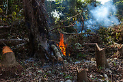 Fire to burn small vegetation before cutting down trees to broaden the search for gold in the Peruvian Amazon at Boca Colorado, Peru.