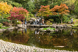 © Licensed to London News Pictures. 20/10/2020. LONDON, UK.  Visitors enjoy the autumnal display of changing leaves in the Japanese themed Kyoto Garden in Holland Park, as colourful koi carp swim in the ornamental lake. The forecast is for a heavy rain to arrive in the next few days across much of the UK.  Photo credit: Stephen Chung/LNP