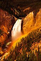 Yellowstone Falls, Grand Canyon the Yellowstone, Yellowstone National Park, Wyoming
