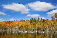 64776-01211 Pete's Lake in fall color Schoolcraft County Upper Peninsula Michigan