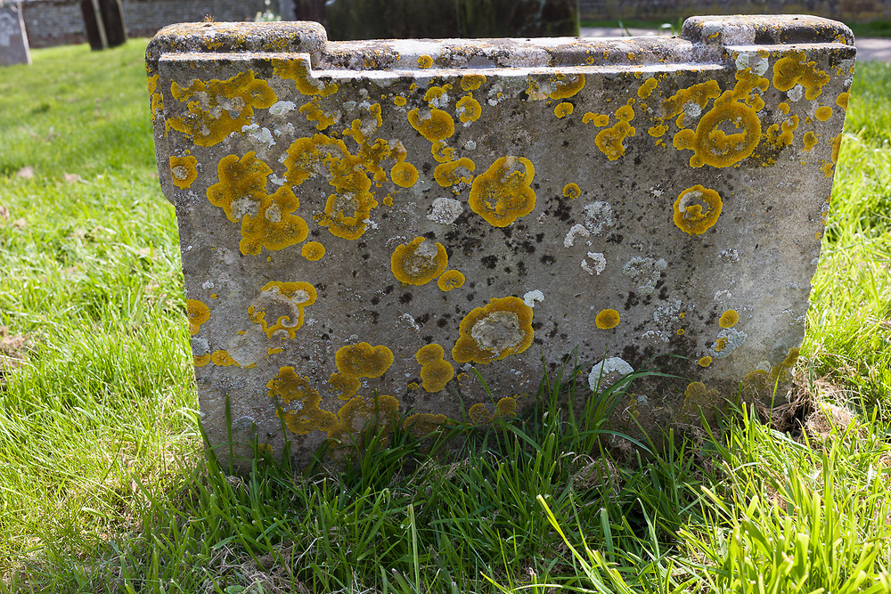 Tombstone in Southwold, Suffolk, England
