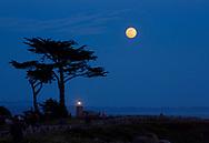 Lighthouse Point under full moon, Santa Cruz, California
