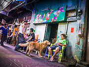 29 DECEMBER 2012 - BANGKOK, THAILAND: Thais sit in front of their home and drink just before the New Year in the Chinatown area of Bangkok, Thailand. The front of the home was decorated with a mural of Disney characters.       PHOTO BY JACK KURTZ