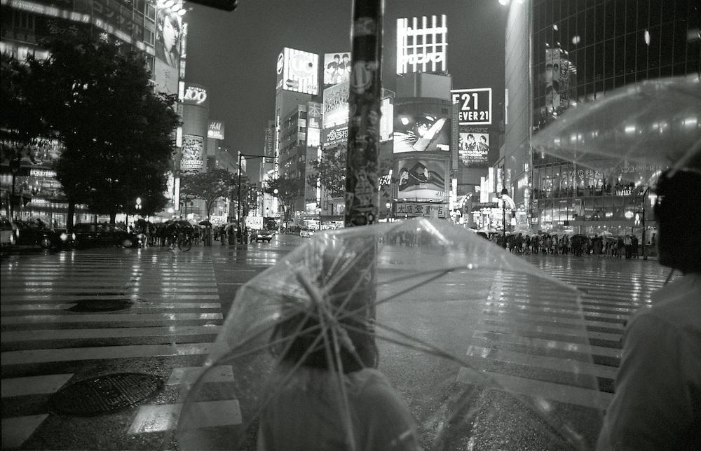 Umbrellas in the rain, Shibuya crossing, Shibuya, Tokyo, Japan.