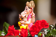 Nov. 22, 2009 -- PHOENIX, AZ: Ganesha, an Indian Hindu deity, at the annual Discover India Festival in Phoenix, AZ. This is the 8th year the Indian Association of Phoenix has sponsored the festival, which started as a celebration of Diwali, the Indian Festival of Lights, and has since grown to be a celebration of India's cultures, traditions and diversity.    Photo by Jack Kurtz