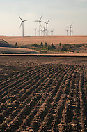 electric generating windmills in the wheat farming Palouse region of eastern Washington, USA