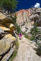 Hiking trail to Observation point, Zion National Park, located in the Southwestern United States, near Springdale, Utah.