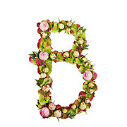 Capital Letter B Part of a set of letters, Numbers and symbols of the Alphabet made with flowers, branches and leaves on white background