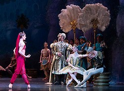 La Bayadere <br /> A ballet in three acts <br /> Choreography by Natalia Makarova <br /> After Marius Petipa <br /> The Royal Ballet <br /> At The Royal Opera House, Covent Garden, London, Great Britain <br /> General Rehearsal <br /> 30th October 2018 <br /> <br /> STRICT EMBARGO ON PICTURES UNTIL 2230HRS ON THURSDAY 1ST NOVEMBER 2018 <br /> <br /> Marianela Nunez as Nikiya <br /> A Bayadere and a temple dancer <br /> <br /> Vadim Muntagirov as Solor <br /> A warrior <br /> <br /> Natalia Osipova as Gamzatti <br /> <br /> Thomas Whitehead as Rajah <br /> <br /> <br /> Photograph by Elliott Franks Royal Ballet's Live Cinema Season - La Bayadere is being screened in cinemas around the world on Tuesday 13th November 2018 <br /> --------------------------------------------------------------------
