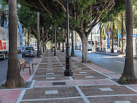 Tree-lined pedestrian walkway, Puerto Banus, Marbella, Spain, 10th October 2016, 2016101012939<br /><br />Copyright Image from Victor Patterson, 54 Dorchester Park, Belfast, UK, BT9 6RJ<br /><br />t1: +44 28 9066 1296 (from Rep of Ireland 048 90661296)<br />t2: +44 28 9002 2446 (from Rep of Ireland 048 90022446)<br />m: +44 7802 353836<br /><br />e1: victorpatterson@me.com<br />e2: victorpatterson@gmail.com<br /><br />www.victorpatterson.com<br /><br />IMPORTANT: Please see my Terms and Conditions of Use at www.victorpatterson.com